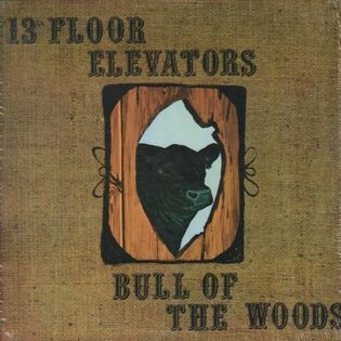 13th-floor-elevators-bull-of-the-woods.jpg