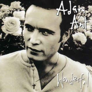 adam-ant-wonderful.jpg