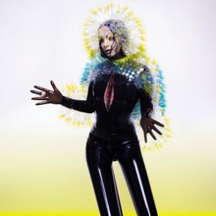 Björk – Vulnicura