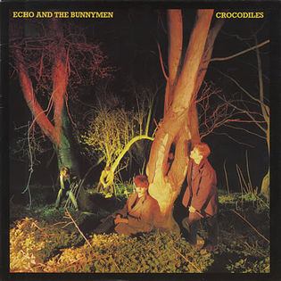 Echo and The Bunnymen – Crocodiles