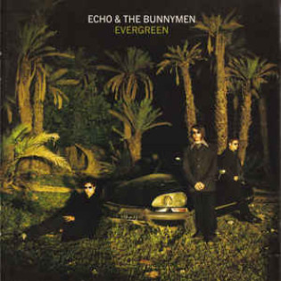 echo-and-the-bunnymen-evergreen.jpg