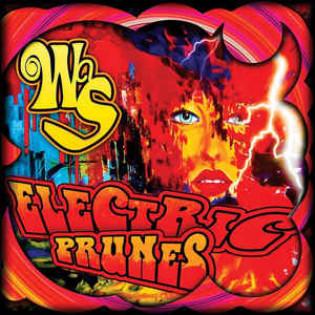 electric-prunes-was.jpg