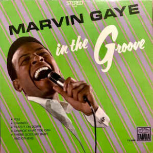 marvin-gaye-in-the-groove.jpg