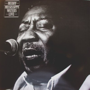 muddy-waters-muddy-mississippi-waters-live.jpg