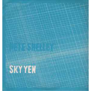pete-shelley-sky-yen.png