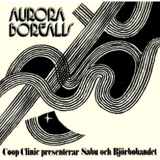 sabu-och-bjorbobandet-aurora-borealis.jpg