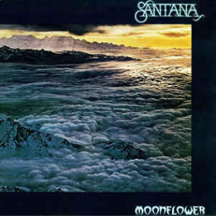 santana-moonflower.jpg