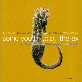 sonic-youth-in-the-fishtank-09.jpg