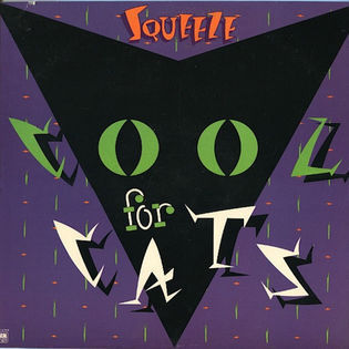 squeeze-cool-for-cats.jpg