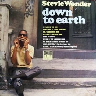 stevie-wonder-down-to-earth.jpg