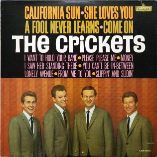 the-crickets-california-sun.jpg