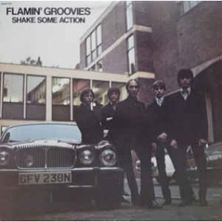 the-flamin-groovies-shake-some-action.jpg