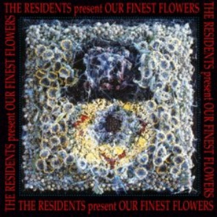 the-residents-our-finest-flowers.jpg