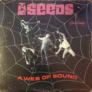 the-seeds-a-web-of-sound.jpg