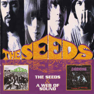 the-seeds-the-seeds-a-web-of-sound.jpg