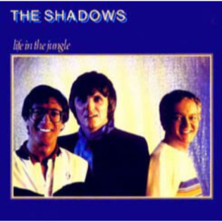 the-shadows-life-in-the-jungle.jpg