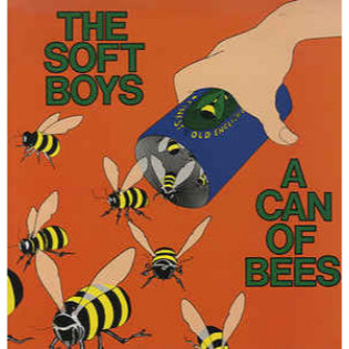 the-soft-boys-a-can-of-bees.jpg