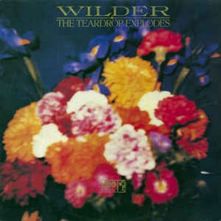 the-teardrop-explodes-wilder.jpg
