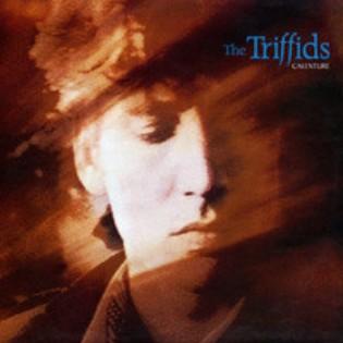 The Triffids – Calenture