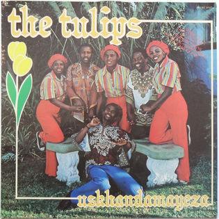 the-tulips-uskhandamayeza.jpg