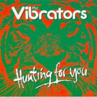 the-vibrators-hunting-for-you.jpg