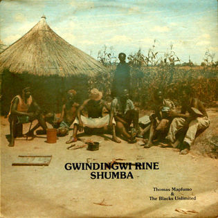 thomas-mapfumo-and-the-blacks-unlimited-gwindingwi-rine-shumba.jpg